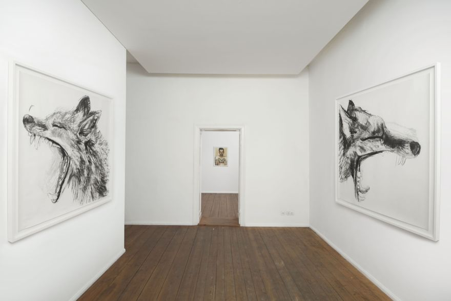 Urban Fox Studies series installation view, 165cmx 195cm, (Framed)Charcoal on paper, 2013, Neither Here Nor There, Grimmuseum, Berlin. 2013