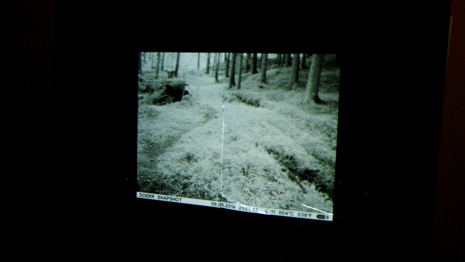 Video still, installation view, Gods & Demons of the Forest at Detroit Stockholm, Sweden, 2014