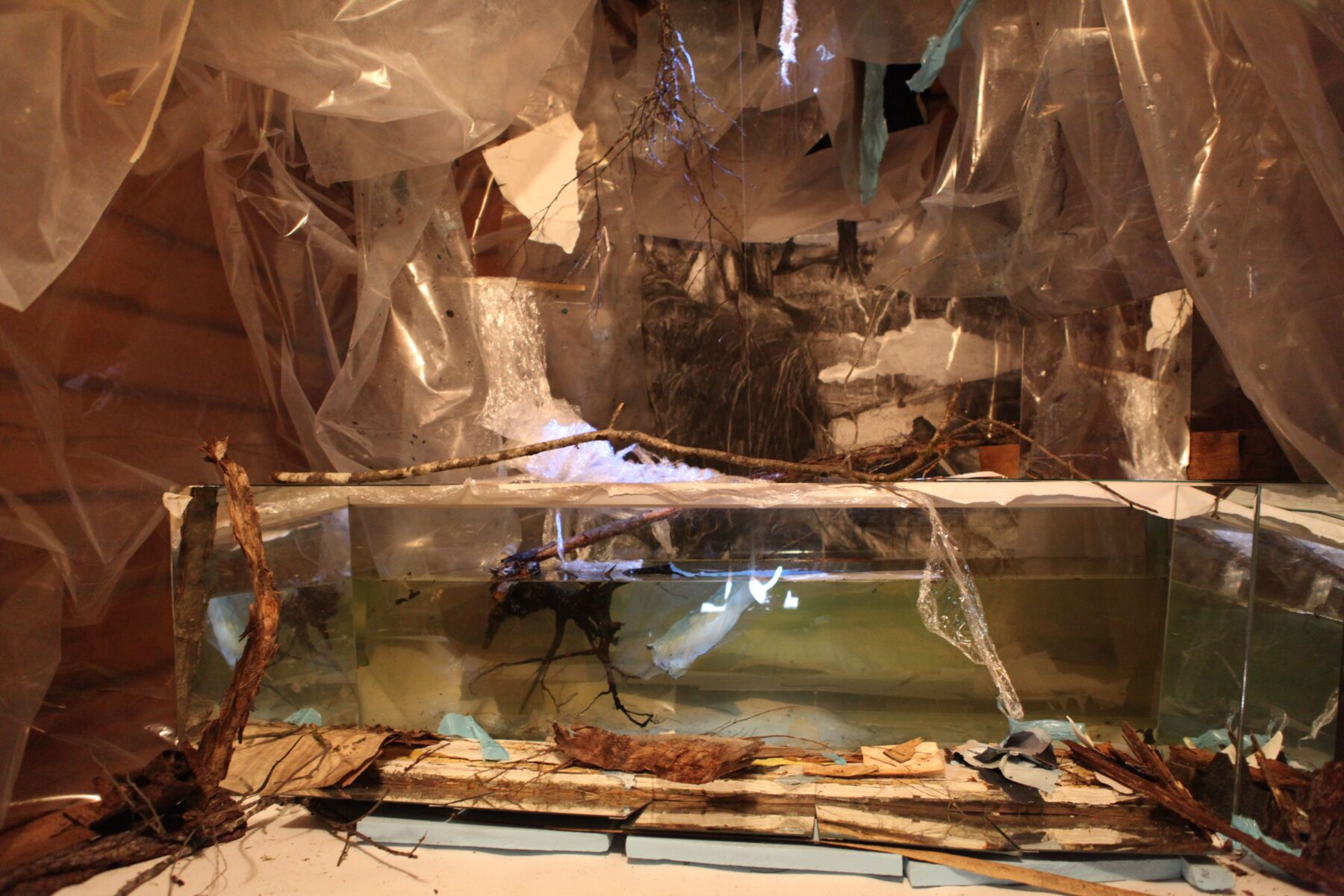 Petrochemical Bliss: 5 Stages of decay, was a site-specific installation built for the exhibition Financial Times, at Mustarinda, Finland in 2013, Jane Hughes