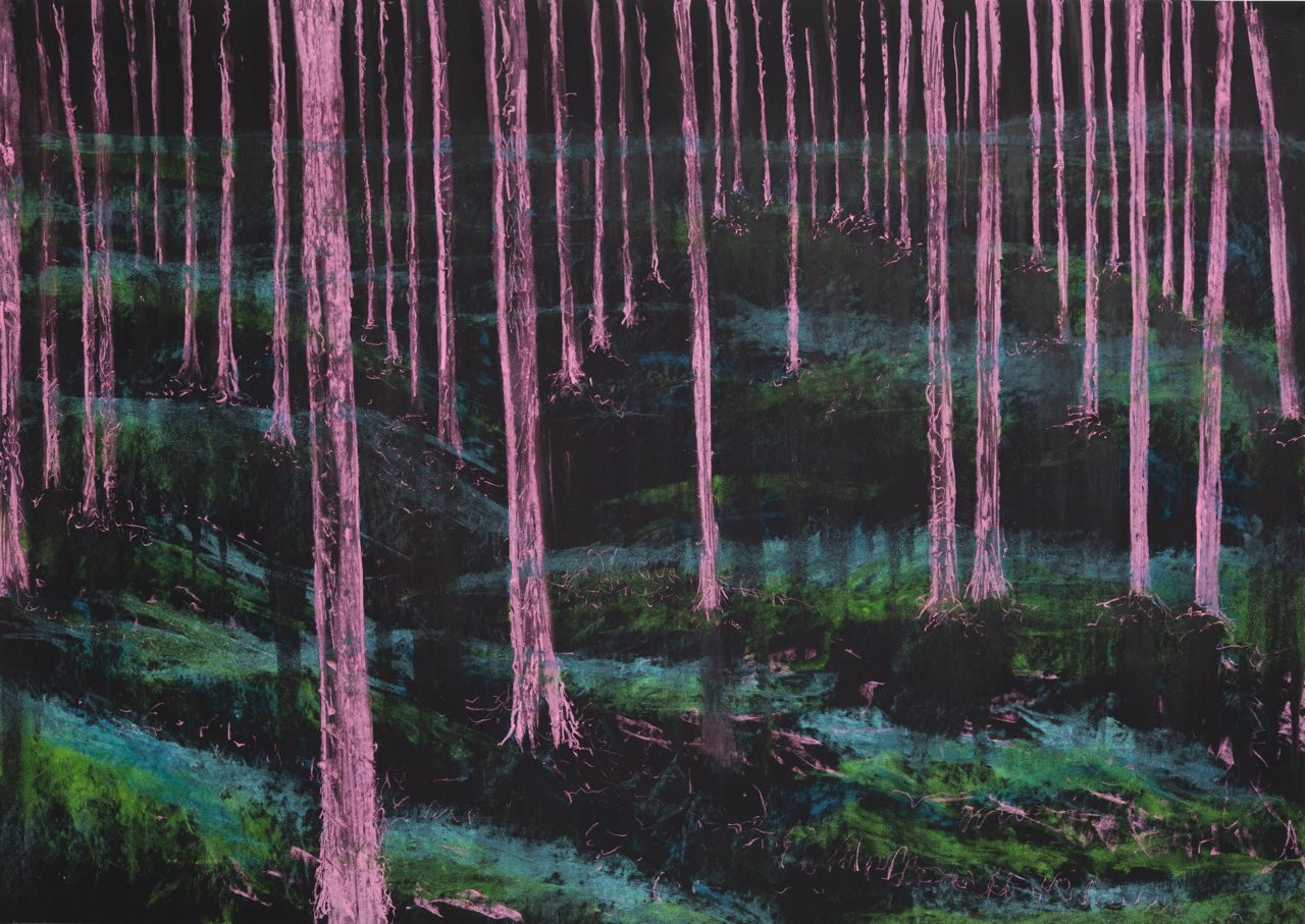 pink forests, 70 x 100 cm, pastel on paper, 2014, Jane Hughes