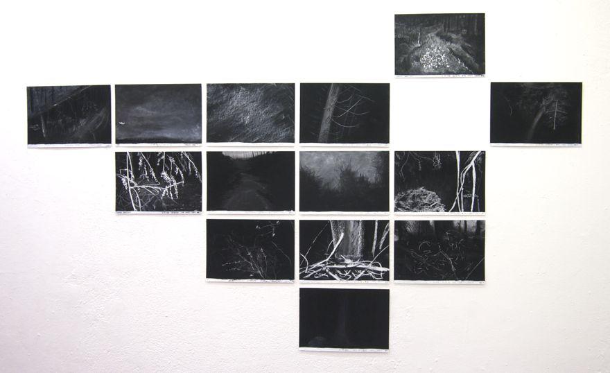 Gods & Demons of the Forest at Detroit Stockholm, Sweden, 2014, Jane Hughes