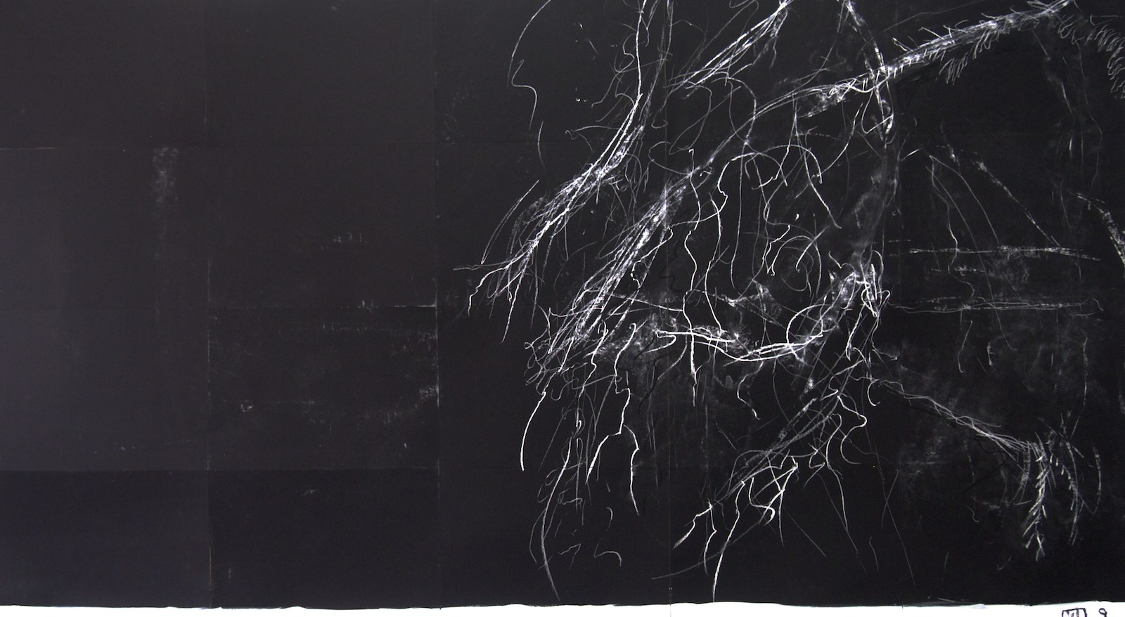 ghostly branches, chalk pastel on paper, 100cm x 180cm, 2014, Jane Hughes
