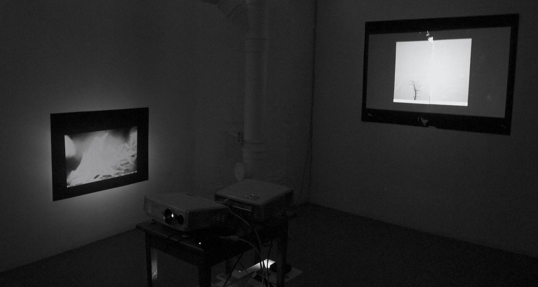 Installation view, Gods & Demons of the Forest at Detroit Stockholm, Sweden, 2014, Jane Hughes